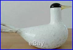 Iittala Birds by Oiva Toikka Glass Art arctic tern nuutajarvi Limited From Japan