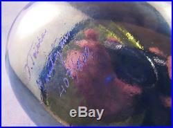 Iittala OIVA TOIKKA, Art Glass Bird, Night Tern, Limited Edition, New In Box