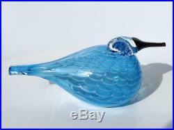 Oiva Toikka Quendelon Turquoise Iittala Bird Oiva Toykka
