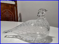 Oiva Toikka art glass bird DOVE OF PEACE / SOVINNON KYYHKY Iittala Finland, BOX