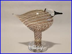 Oiva Toikka bird Ringedplover glass design Birds by Toikka Iittala Finland