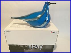Oiva Toikka bird Taivaanvuohi art glass design Birds by Toikka Iittala BOX