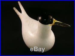 Oiva Toikka iittala Artic Tern Annual bird