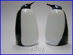 Oiva Toikka iittala Penguin TUbbergen RARE Dutch bird